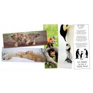 Animal Fun Facts Bookmarks
